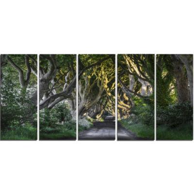 Designart The Dark Hedges Ireland Landscape Photography Canvas Art Print - 5 Panels