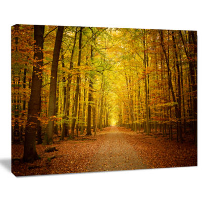 Designart Pathway In Green Autumn Forest Photography Canvas Art Print