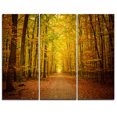 Design Art Pathway In Green Autumn Forest Photography Canvas Art Print - 3 Panels