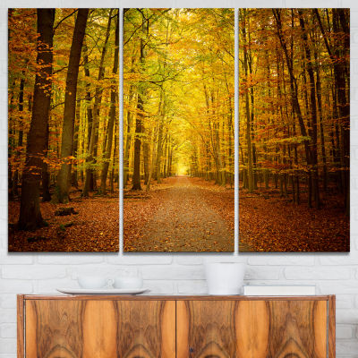 Designart Pathway In Green Autumn Forest Photography Canvas Art Print - 3 Panels