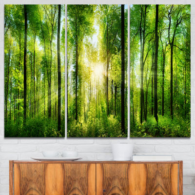 Design Art Forest With Rays Of Sun Panorama Landscape Art Print Canvas - 3 Panels