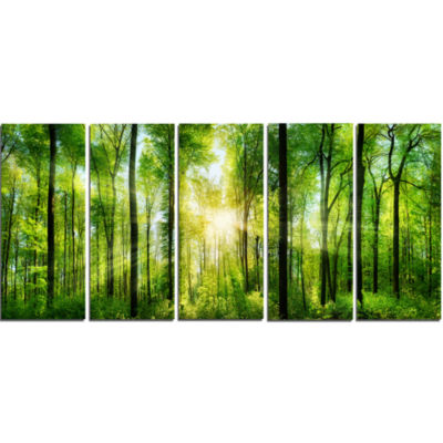 Designart Forest With Rays Of Sun Panorama Landscape Art Print Canvas - 5 Panels