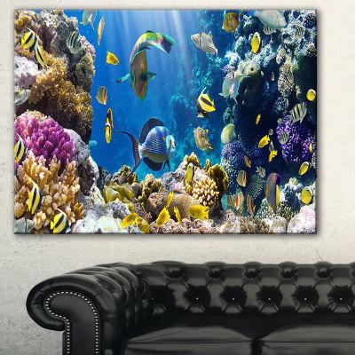 Designart Fish In Coral Reef Seascape PhotographyCanvas Art Print
