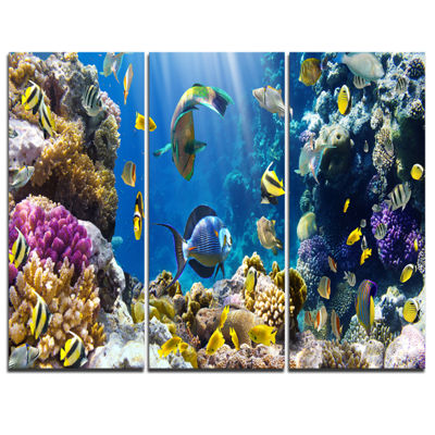 Designart Fish In Coral Reef Seascape PhotographyCanvas Art Print - 3 Panels
