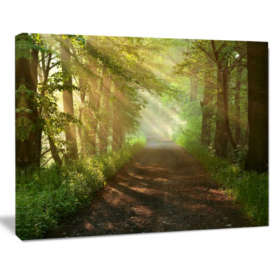 Designart Suns Peeks Into Forest Landscape Photography Canvas Print