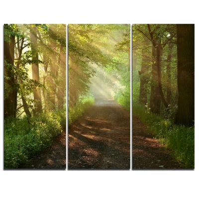 Designart Suns Peeks Into Forest Landscape Photography Canvas Print - 3 Panels