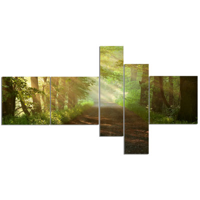 Design Art Suns Peeks Into Forest Landscape Photography Canvas Print - 5 Panels