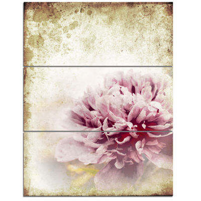 Designart Pink Peony In Vintage Style Art CanvasPrint - 3 Panels