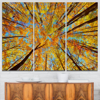 Designart Tree Tops In Autumn Forest Canvas Art Print - 3 Panels