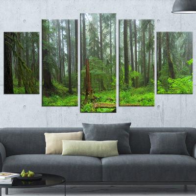 Designart Hoh Rain Forest (373) Landscape Photography Canvas Art Print - 5 Panels