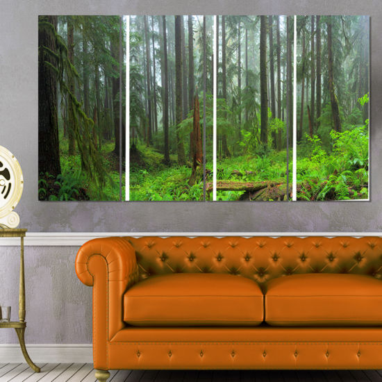 Designart Hoh Rain Forest Landscape Photography Canvas Art Print - 4 Panels