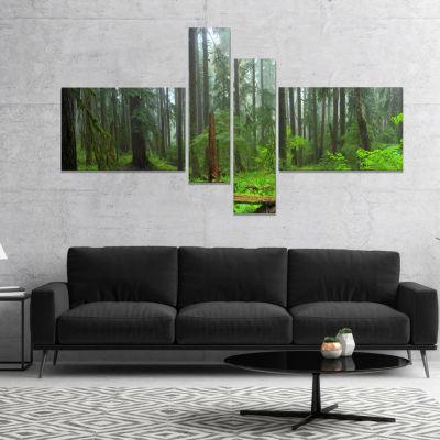 Designart Hoh Rain Forest Landscape Photography Canvas Art Print - 4 Panels