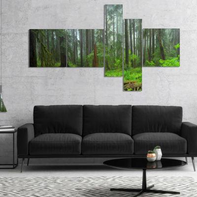 Designart Hoh Rain Forest Landscape Photography Canvas Art Print - 5 Panels