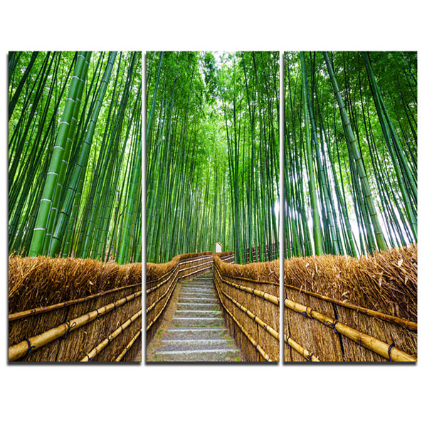 Designart Path To Bamboo Forest Landscape Photography Canvas Print - 3 Panels