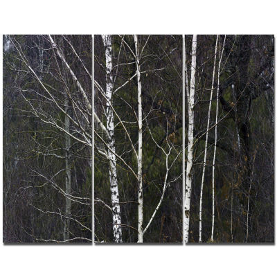 Designart Black And White Birch Forest Abstract Wall Art Canvas - 3 Panels