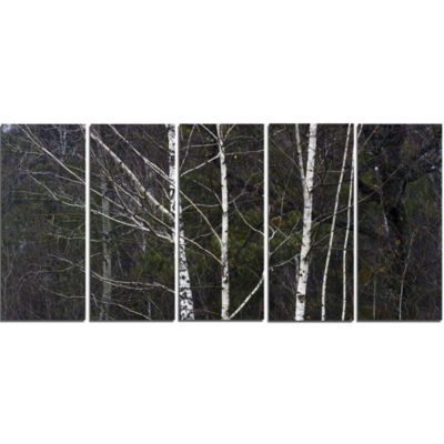 Designart Black And White Birch Forest Abstract Wall Art Canvas - 5 Panels