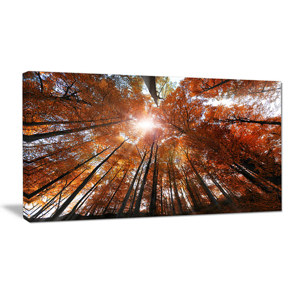 Designart Picturesque Fall Forest Panorama Landscape Canvas Art Print