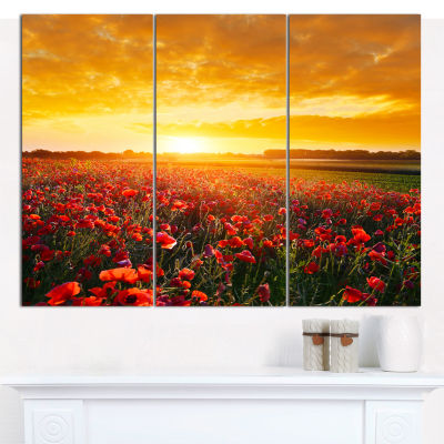 Designart Poppy Field Under Ablaze Sunset AbstractWall Art Canvas - 3 Panels
