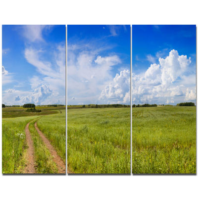 Designart Road In Field With Green Grass LandscapeCanvas Art Print - 3 Panels