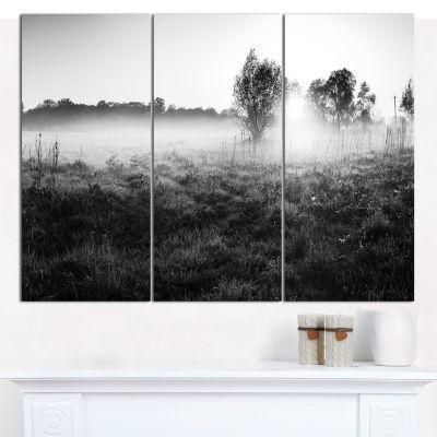Designart Rural Meadow In Mist Landscape Canvas Art Print - 3 Panels