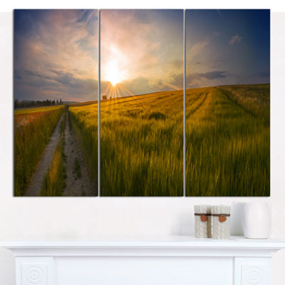 Designart Sunset In Field Of Grain Panorama Landscape Canvas Art Print - 3 Panels