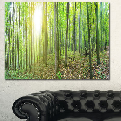 Designart Thick Green Forest Panorama Landscape Canvas Art Print
