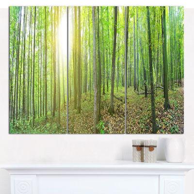 Designart Thick Green Forest Panorama Landscape Canvas Art Print - 3 Panels