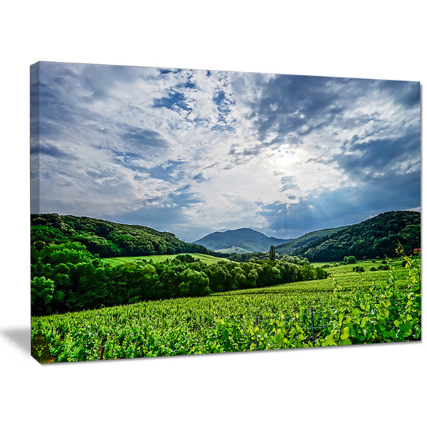Designart Thunderstorm Weather Over Vineyards Landscape Canvas Art Print