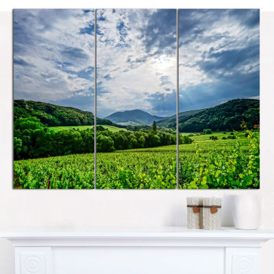 Designart Thunderstorm Weather Over Vineyards Landscape Canvas Art Print - 3 Panels
