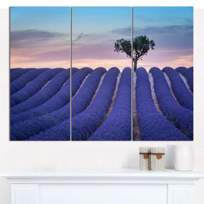 Designart Lonely Trees Uphill On Sunset LandscapeCanvas Wall Art - 3 Panels