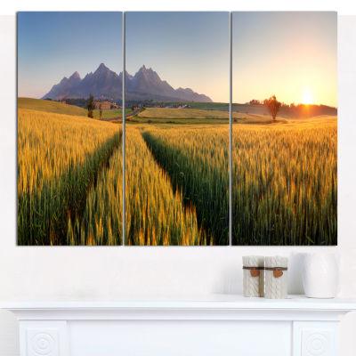 Designart Path In The Wheat Field Landscape CanvasWall Art - 3 Panels
