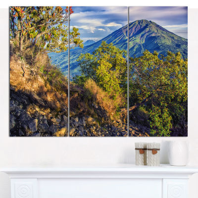 Designart Merbabu Volcano In Java Landscape CanvasWall Art - 3 Panels