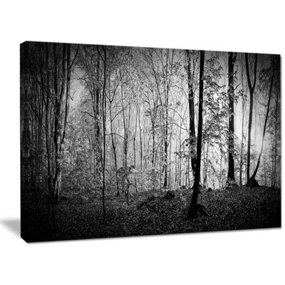 Designart Morning In Thick Fall Forest Landscape Canvas Wall Art