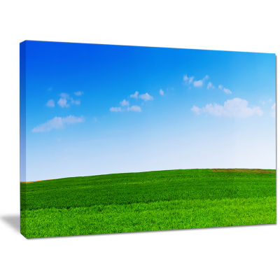 Designart Green Meadow Panorama Landscape Canvas Wall Art