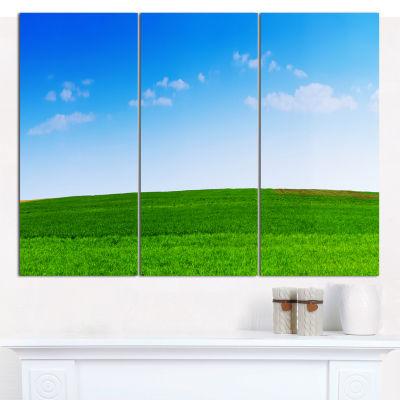 Designart Green Meadow Panorama Landscape CanvasWall Art - 3 Panels