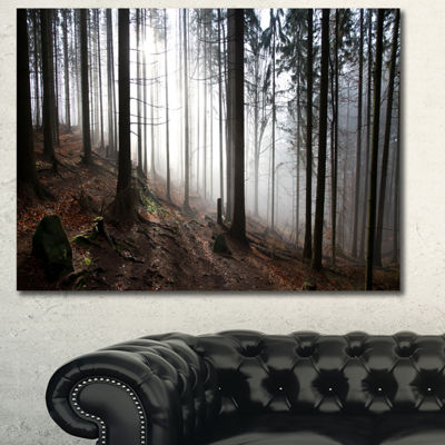 Designart Misty Forest Morning Panorama LandscapeCanvas Wall Art