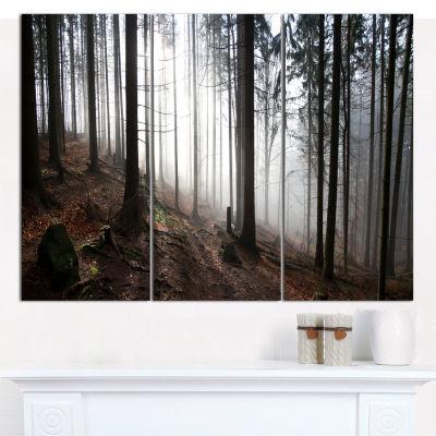 Designart Misty Forest Morning Panorama LandscapeCanvas Wall Art - 3 Panels