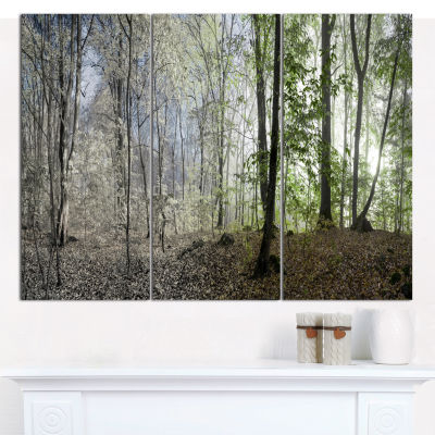 Designart Green Morning In Forest Panorama Landscape Canvas Wall Art - 3 Panels