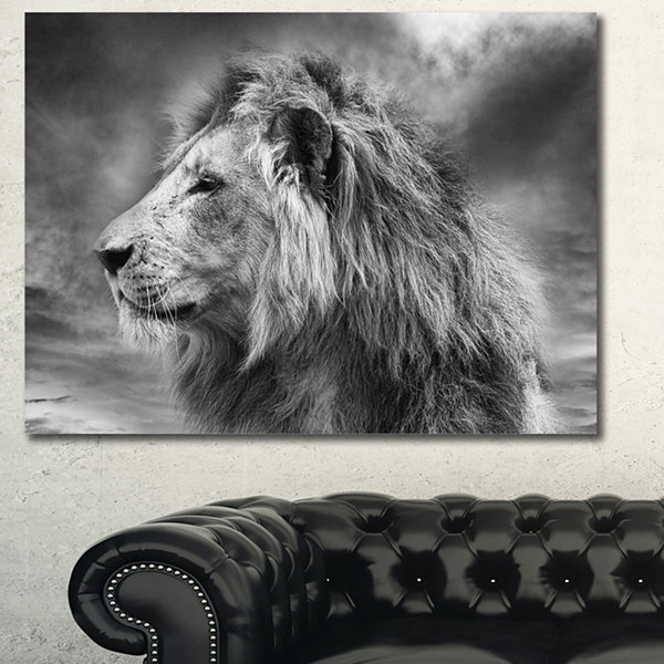 Designart Grey Wild African Lion Canvas Wall Art
