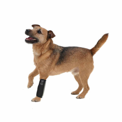 The Pet Life Extreme-Neoprene Joint Protective Reflective Pet Sleeves