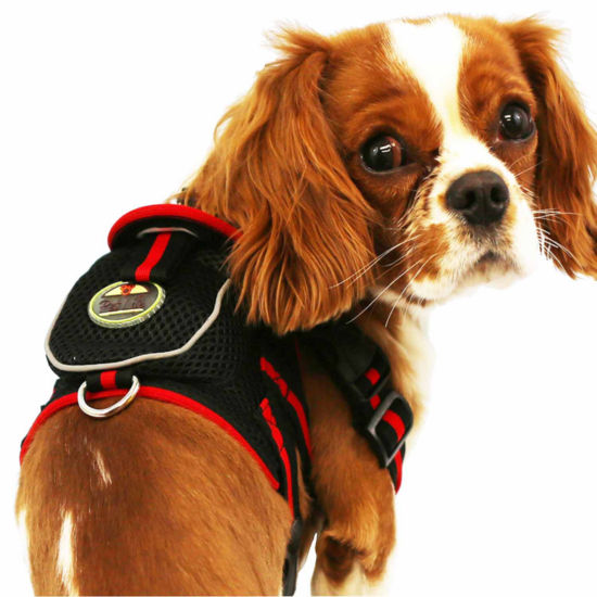The Pet Life Mesh Pet Harness With Pouch