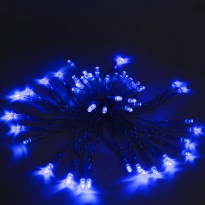 ALEKO Battery Operated Christmas Holiday Party String Lights 60 LED