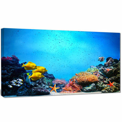 Designart Underwater Scene Seascape Photography Canvas Art Print