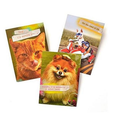 Gartner Greetings®  Pet Humor Greeting Cards, 3 pack, Friendship