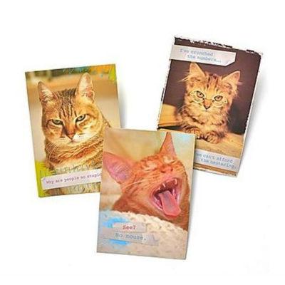 Gartner Greetings®  Pet Humor Greeting Cards, 3 pack, Birthday