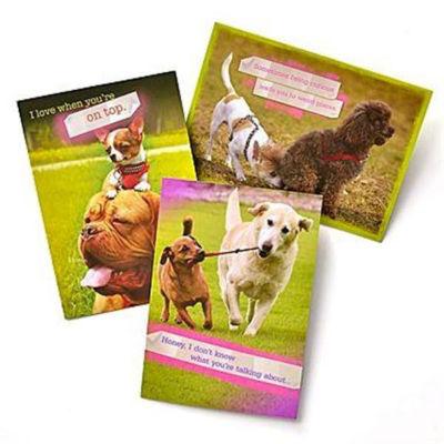 Gartner Greetings®  Pet Humor Greeting Cards, 3 pack, Thinking Of You