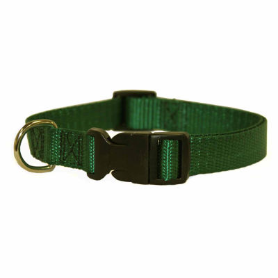 "Majestic Pet Adjustable Nylon Dog Collar - 8"" - 12"", 2-12 LBS"