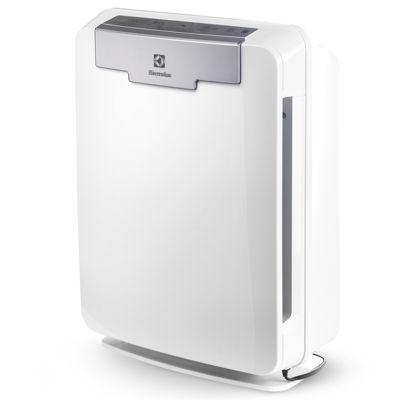 Electrolux® PureOxygen Allergy™ 300 Allergen Air Purifier