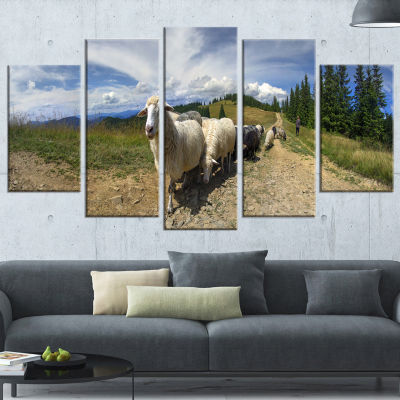 Designart Shepherd and Sheep of Carpathian Landscape Photography Canvas Print - 5 Panels