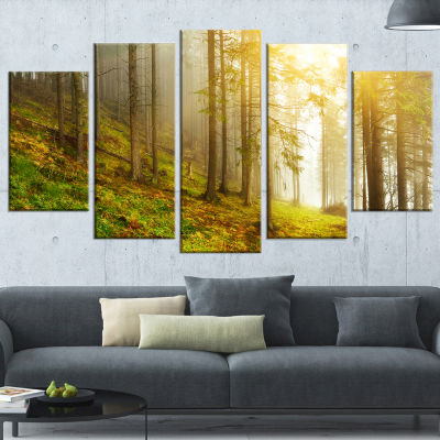 Designart Sun Finds Its Way in Forest Landscape PhotographyCanvas Print - 5 Panels